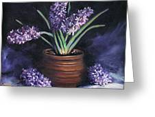 Hyacinths In A Pot Greeting Card