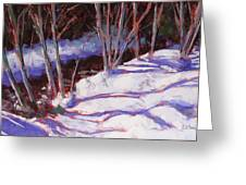 Hyak Stream Greeting Card by Mary McInnis