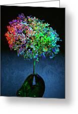 Hydrangea #1 Greeting Card