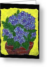 Hydrangea In A Pot Greeting Card