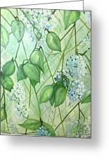 Hydrangea In Green Greeting Card