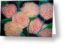 Hydrangea Inspiration Greeting Card
