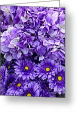 Hydrangeas And Daisies So Purple Greeting Card