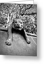 Hyena On The Wall Greeting Card