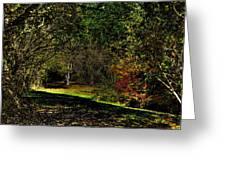 Hylebos In Autumn Greeting Card