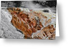 Hymen Terrace Mammoth Hot Springs Yellowstone Park Wy Greeting Card
