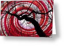 Hypnotic Nature Greeting Card