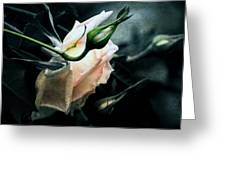 I Am Your Ghost Of A Rose Greeting Card
