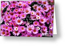 I Believe In Pink Daisies Greeting Card