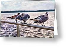 I Can See You Watching Us Greeting Card