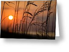 I Feel The Summer Breeze Greeting Card