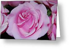 I Just Love Pink  Greeting Card