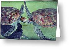 I Kissed A Turtle And I Liked It Greeting Card