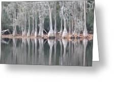 I Love Cypress Greeting Card