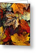 I Love Fall 2 Greeting Card by Joanne Coyle