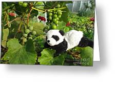 I Love Grapes Says The Panda Greeting Card