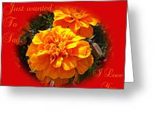 I Love You In Red And Orange Greeting Card by Dawn Hay