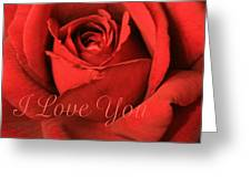I Love You Rose Greeting Card