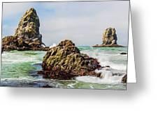 I Sea Said The Starfish Greeting Card