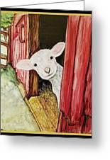 I See Ewe Little Lamb Greeting Card
