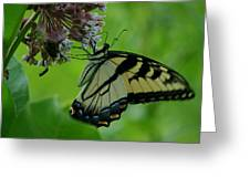 I Want To Be A Butterfly Greeting Card