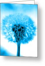 I Wish In Turquoise Greeting Card