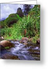 Maui Hawaii Iao Valley State Park Greeting Card