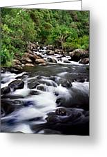 Iao Valley Stream Greeting Card