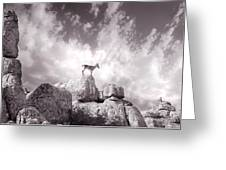 Ibex -the Wild Mountain Goats In The El Torcal Mountains Spain Greeting Card