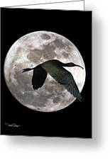 Ibis Moon Greeting Card