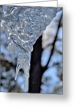 Ice Art 47 Greeting Card