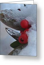 Ice Berries Greeting Card