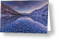 Ice Champagne Greeting Card