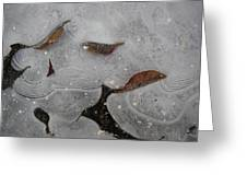 Ice Designs Greeting Card