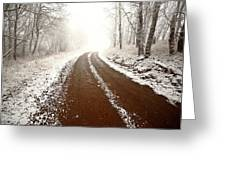 Ice Fog In Cypress Hills Provincial Park Of Saskatchewan Greeting Card