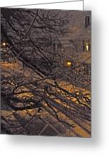 Ice In The Night Greeting Card