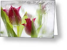 Ice Lantern Greeting Card