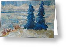 Ice On Lake Erie Greeting Card