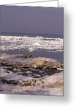 Ice On Lake Huron Greeting Card