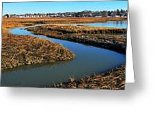 Ice On The Saltmarsh  Greeting Card