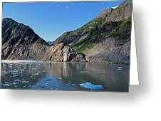 Ice On The Water Greeting Card