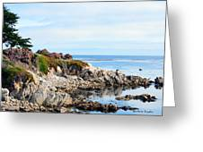 Ice Plant Along The Monterey Shore 2 Greeting Card