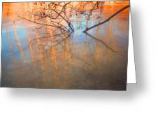 Ice Reflections 2 Greeting Card