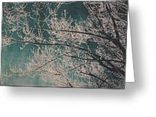 Ice Storm Branches - Blue Greeting Card