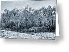 Ice Storm In The Flint Hills No 1 2724 Greeting Card