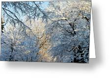 Ice Storm On The 6th IIi Greeting Card