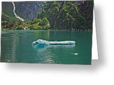 Ice Tracy Arm Alaska Greeting Card