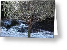 Ice Tree Greeting Card