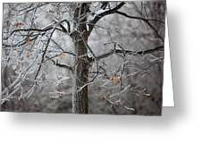 Ice Tree Greeting Card