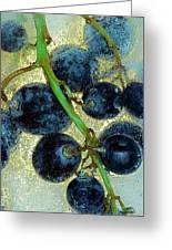 Ice Wine Greeting Card by Michal Boubin